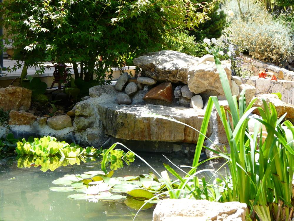 cr ation de bassin artisan paysagiste cannes bocca jardins. Black Bedroom Furniture Sets. Home Design Ideas